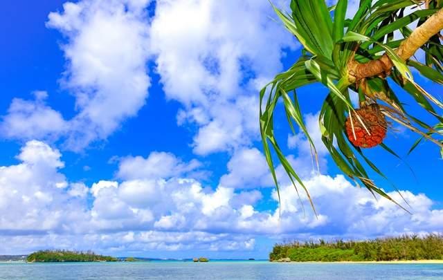 あなたがやりたいことを全部、沖縄で叶えてみませんか?