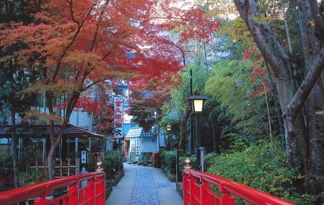 静岡であたらしい生き方に出会おう