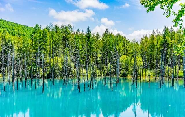 有名な青い池!!